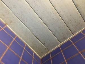 カビのついた天井