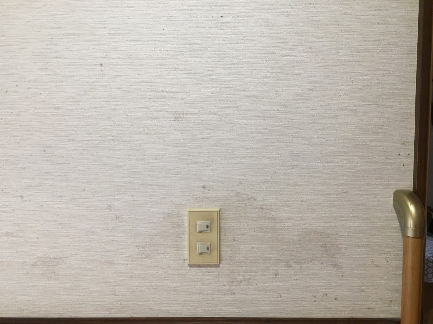 シミがついた壁