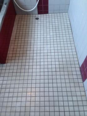 きれいになったタイルの床