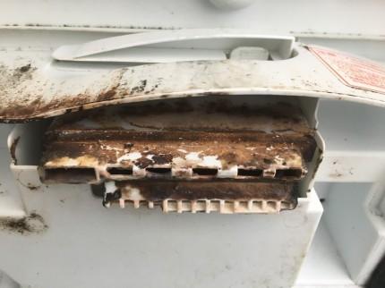 洗濯機の柔軟剤の入り口の裏側