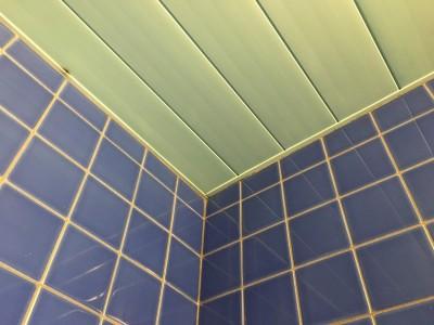 カビをクリーニングした天井